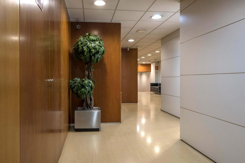 Oficina – Barcelona 300.00 m2 photo3